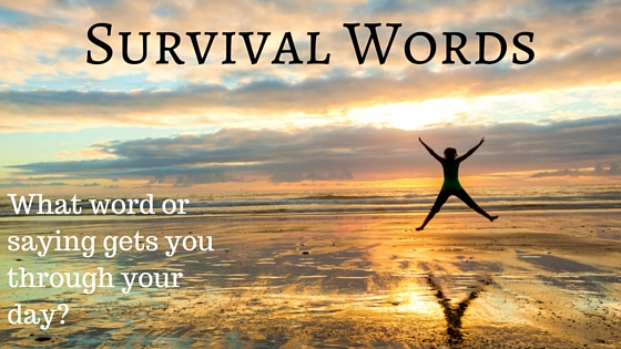 Blog on surviving